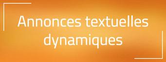 Nouveauté AdWords : Les annonces textuelles dynamiques