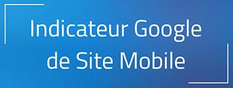 L'indicateur Site mobile sur Google : Comment l'avoir ?
